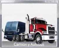 Camión y autobus